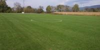 Screamin Green Soccer Field
