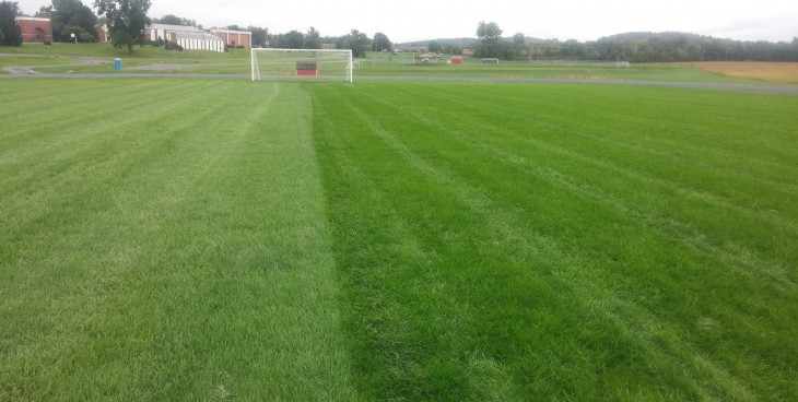 Side by Side Comparison- Strutter Turf_Soccer