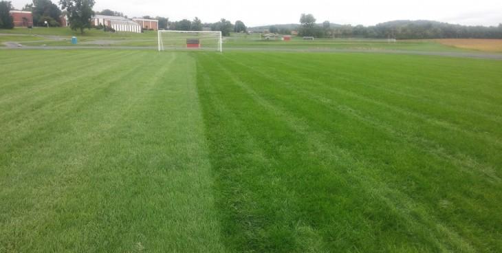 Side by Side Comparison- Strutter Turf_Soccer