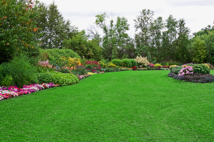 Green Lawn in Landscaped Formal Garden - Clarus on beautiful front gardens, beautiful natural gardens, beautiful exotic gardens, beautiful coastal gardens, beautiful large gardens, beautiful school gardens, beautiful drought tolerant gardens, beautiful food gardens, beautiful cutting gardens, beautiful urban gardens, beautiful cool gardens, beautiful floral gardens, beautiful japanese gardens, beautiful winter gardens, beautiful oriental gardens, beautiful kitchen gardens, beautiful english gardens, beautiful private gardens, beautiful religious gardens, beautiful romantic gardens,