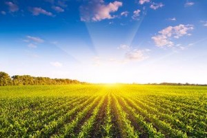 Solutions For Agriculture